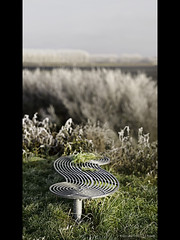 HBM - The Low Edition (PhotoJunket) Tags: cold grass metal bench frost low freezing ely swirls cambridgeshire hoar hbm softrime benchmonday fenriverway
