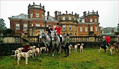 Out with the Hunt (Janna...) Tags: dogs hall norfolk hunting hunt fakenham guist sennowepark westnorfolkfoxhounds