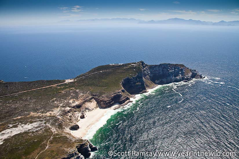 Table Mountain National Park - Western Cape - South Africa