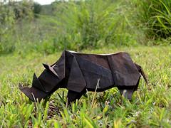 Rhinoceros (John Montroll) (Danielle Verbeeten) Tags: