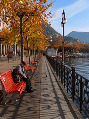 Autumn lines - Linee d'autunno (Salvatore Ingala) Tags: autumn red lake lines bench lago shadows pigeons perspective oldman ombre autunno rosso lugano lakefront vecchio lungolago prospettiva panchina linee piccioni anziano lagodilugano luganoslake salvatoreingala