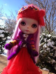 Phoebe in colorful daylight...and the cold!