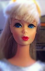 Platinum TNT Barbie (Pavla Moore) Tags: vintage mod barbie tnt platinum zokko