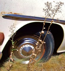 Pontiac (tikitonite) Tags: street urban classic abandoned broken grass america weeds junk rust gm metro decay rusty tire faded fender forgotten americana pontiac junkyard roadside okc hubcap crusty oklahomacity decayed oxidized