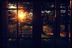Il sorgere del sole (martmagg) Tags: alberi landscape alba finestra sole luce paesaggio giardino