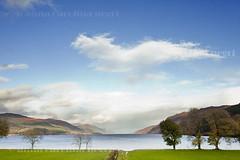 Scotland! (ACNegri) Tags: life autumn light naturaleza color tree fall luz nature beauty landscape scotland highlands natural natureza bonito scottish escocia paisagem vida rbol otoo beleza rvore cor montanha outono montain paisage escoces