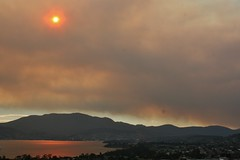 Please donate - Tasmanian Bushfire Appeal (see...