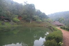 078 (balagopalmohan) Tags: rain country wyanad