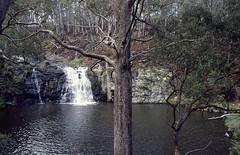 Moffat Falls 1981 (dustaway) Tags: plants nature water rock creek countryside waterfall scenery australia nsw cascade backcreek newenglandtablelands creekscape moffatfalls