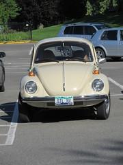 Beetle Envy (jamica1) Tags: kamloops bc british columbia canada vw volkswagen betle btl nv license plate