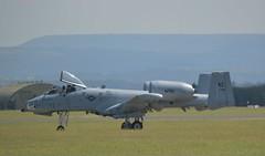 A10 (31) @ RAF Leeming 19-07-16 (AJBC_1) Tags: fighterjet warplane military england unitedkingdom uk ©ajc aircraft aeroplane plane jet airplane rafleeming leeming northyorkshire egxe exercisejadedthunder2016 usaf unitedstatesairforce a10 442ndfighterwing airforcereservecomponent afrc a10thunderboltii warthog 800281 ajbc1
