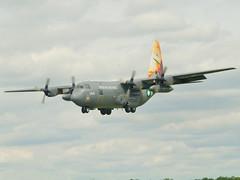 Hercules C-130E 144 6 SQD Pakistan Air Force Fairford (johnforster752) Tags: hercules c130e 6sqd 144 pakistan air force