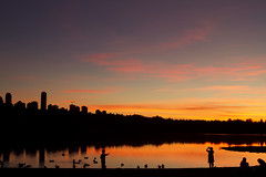 Sunset (Takako Kitamura) Tags: sunset deerlake silhouette duck reflection