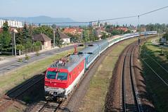 "l'EN ""Galileo Galilei""  Dunakeszi (Trains-En-Voyage) Tags: mav zssk350 euronight galileogalilei rzd dunakeszi hongrie cd"
