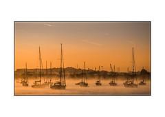 Sunrise in Erith (derek_michalski) Tags: sunrise edith uk water boats mist for nikon d800 frame white background weather polariser filter gold sky thames fav