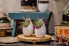 adjectives-market-winter-garden-4495 (ADJstyle) Tags: adjectives adjstyle centralflorida furniture homedecor products