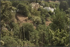 Vida sana  (jose luis naussa ( + 2 millones . )) Tags:     naturaleza vida casas paisaje saariysqualitypicturesgallery vividstriking