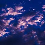 Let it blue. thumbnail