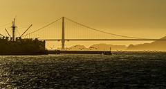 Golden Gate     San Francisco (DROSAN DEM) Tags: pelicans atardecer sunset mar sea golden gate san francisco usa vacacion travel pelicanos puente