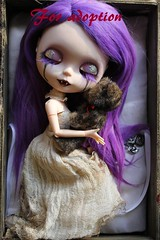 blythe vampire Adoption! (Dusk~) Tags: blythe ooak custom doll vampire purple eye lids chips dress bear box outside piparrot reroot adoption