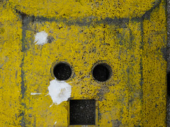 shit happens (Werner Schnell Images (2.stream)) Tags: ws monday face shit happens yellow gelb