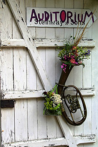 les fleurs sauvages s'étiolent dans des vases domestiqués !