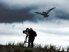 Missed Opportunities (Steve Taylor (Photography)) Tags: kite day hawk cameraman camera tv tripod backpack assistant headphones microphone string cap bird contrast stark newzealand nz southisland canterbury christchurch newbrighton dune grass silhouette sky cloud news