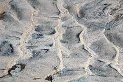 Asymmetrical ripples (El Malpais National Monument, New Mexico, USA) 1 (James St. John) Tags: asymmetrical ripple ripples rippled sand fluvial dry creek stream el malpais national monument cibola county new mexico