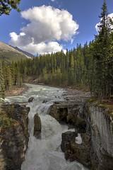 Sunwapta Falls 4 (kenh2011) Tags: sunwapta waterfalls jasper