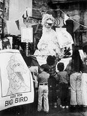 Vote for Big Bird (Tom Simpson) Tags: sesamestreet vintage television behindthescenes bigbird carolspinney election vote voting