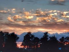 Light and dark (sander_sloots) Tags: wolkenlucht rotterdam clouds sky dusk zonsondergang vroesenpark bomen trees cirrus wolken nuages