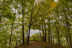 Early Fall Colors at Frontenac State Park, Minnesota (Tony Webster) Tags: frontenac frontenacstatepark lakepepin minnesota mississippiriver upperblufftrail autumn fall fallcolors foliage hiking leaves lookout nature scenic statepark trail uploadedtodnr viewpoint unitedstates us