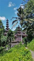 Campuhan Ridge walk (SqueakyMarmot) Tags: travel asia indonesia bali 2016 ubud walk nature tjampuhantemple