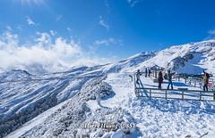Harry_30851,,,,,,,,,,,,,,,,,,,Hehuan Mountain,Taroko National Park,Snow,Winter (HarryTaiwan) Tags:                   hehuanmountain tarokonationalpark snow winter mountain     harryhuang   taiwan nikon d800 hgf78354ms35hinetnet adobergb