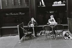 Dog Day Afternoon (vmanseventy) Tags: robertbmcneill tripuk scotland edinburghstreetphotography edinburghinternationalfestival scottishstreetphotography peoplephotos nikon ricohgrd1v lefteyed 50mmlens streetcandid blackandwhite filmphotography decisivemoment edinburghcastle princesstreet royalmile stgiles highstreet mound moundsquare eastprincesstreetgardens sirwalterscottmonument nationalgalleryofscotland rsa ramsaygarden waverley rosestreet playfairsteps westprincesstreetgardens georgeivbridge nikonf65 nikonfm fujix100s ricohgr panasoniclumixgm11232mmlens olympusbodycaplens panasonic20mm17ii fujixpro1 fuji18mmf2lens fuji27mmlens kodakportra160400 agfaisoletteiiisolinar45lens