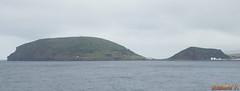 MS Ryndam  Horta (Aores, Portugal) - 3162 (rivai56) Tags: escale de croisires portugal horta aores ms ryndam compagnie holland america
