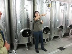 0104 Weingut von Nell 01