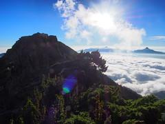 P9240130 (David.CY.Yang) Tags:  syuemountain   eastpeak snowmountain   taiwanmountainash taiwanlaughingthrush  usnea  dawn  holyridgeline   glacialcirque