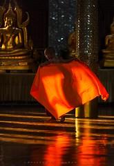 _MG_5386-le-17_04_2016_wat-thail-wattanaram-maesot-thailande-christophe-cochez (christophe cochez) Tags: burmes burma birmanie birman myanmar thailand thailande maesot myawadyy monk bonze novice religion watthailwattanaram travel voyage bouddhisme buddhism portrait