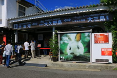 image (Rubia.A) Tags: japan hiroshima 広島 大久野島 okunoisland rabbitisland