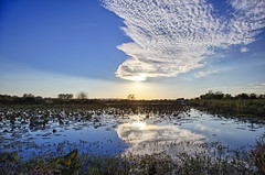 Baker Wetlands (Kansas Poetry (Patrick)) Tags: wetlands bakerwetlands wakarusawetlands lawrencekansas lawrence kansas patrickemerson patricklovesnancy