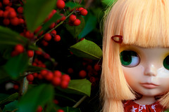 Oh... Those Berries Look Interesting... (welovethedark) Tags: red green holly blythe rue blythedoll takarablythe simplymangoblythe ruesholidaydress