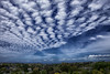 Patterned sunshine (MarkMeredith) Tags: blue newzealand sky cloud weather clouds day skies cloudy auckland northshore nz suburb canonef1740mmf4l