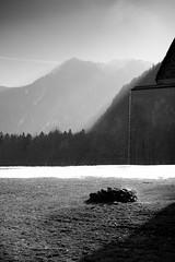 spring (fbnthl) Tags: bw sun mountains water landscape drops spring wasser stones berge steine landschaft sonne tropfen frhling snowmelt schwarzweis schneeschmelze