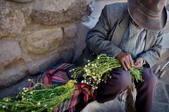 Il ricamatore di fiori (Stefania Ziantoni) Tags: cuzco cusco perù