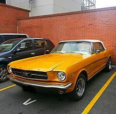 DEAR SANTA CLAUSI WANT ONE OF THIS .....QUERIDO NINO DIOS.QUISIERA UNO DE ESTOS...JE JE JE (Jaime Salazar Alzate....very .busy...!!!!!!) Tags: classic ford car google colombia flickr parking lot amarillo carro mustang clasico techo sudamerica antioquia crome blando flickrandroidapp:filter=none