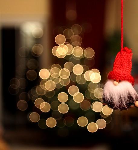 Frohe Weihnachten ~ Merry Christmas (Froschknig Photos) christmas xmas tree weihnachten stars 50mm bokeh weihnachtsmann weihnachtsbaum baum 2012 sterne michau canoneos650d froschknigphotos
