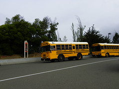 School Buses (kevin42135) Tags: california blue school bus bird ic highway all er thomas kingdom flags hwy international american 80s tc a3 re fe 37 six discovery vallejo 90s tc2000 icre westcoaster tcre tcfe saftliner a3re