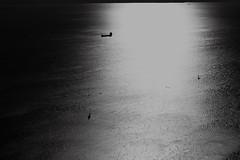 barche (Puma 68) Tags: sea bw sun boats 50mm boat barca mare ship barche bn sole controluce canonef50mmf14usm controsole