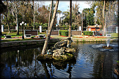 Memorial Pond (Chris C. Crowley) Tags: trees fountain cemetery fence palms pond scenic statues graves daytonabeachflorida bellevuerd chriscrowley memorialpond celticsong22 daytonamemorialgardens fencefriday lohmansfuneralhome